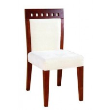 Modern Contemporary Dining Chair